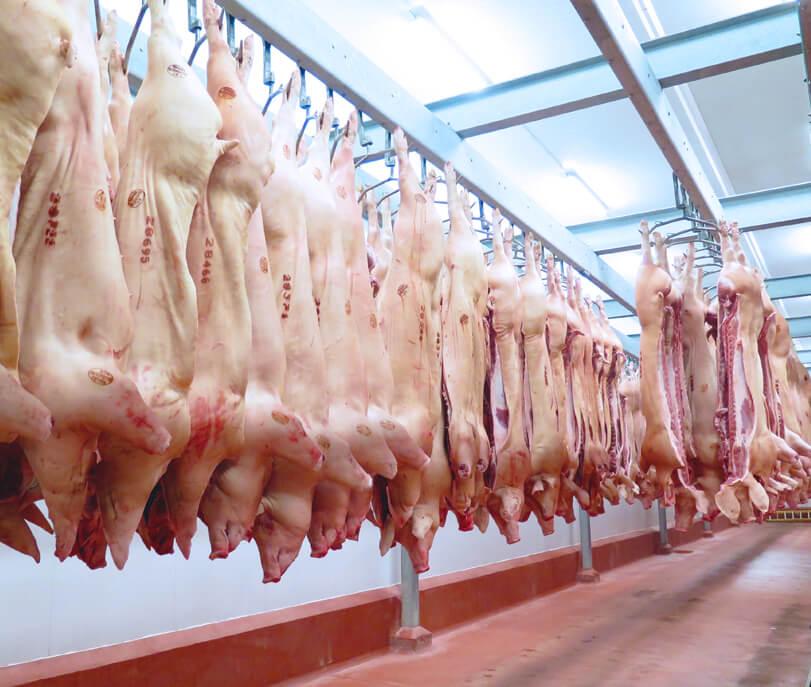 img Pork